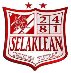 Selaklean thulin 05